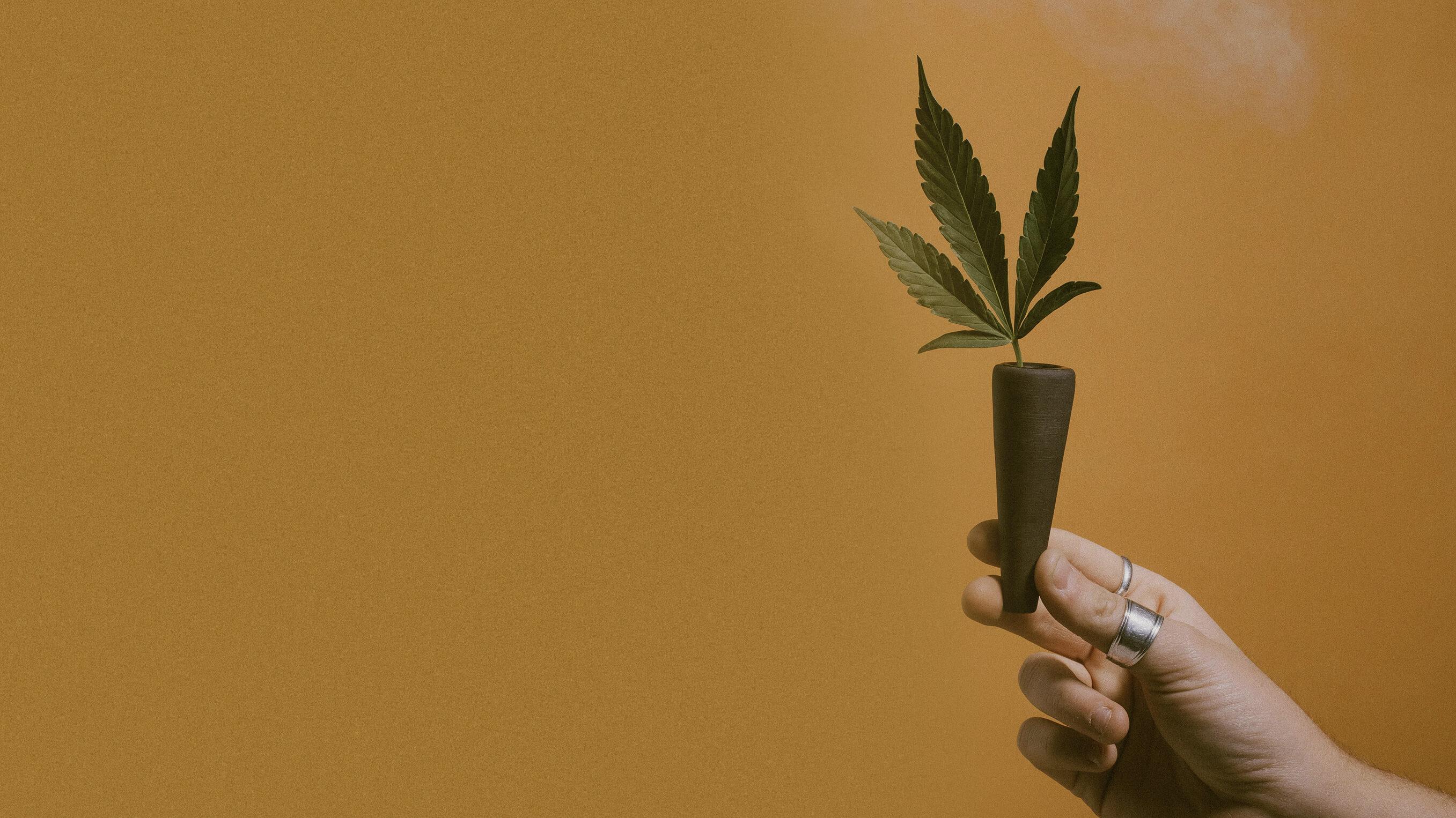 Outpost Cannabis